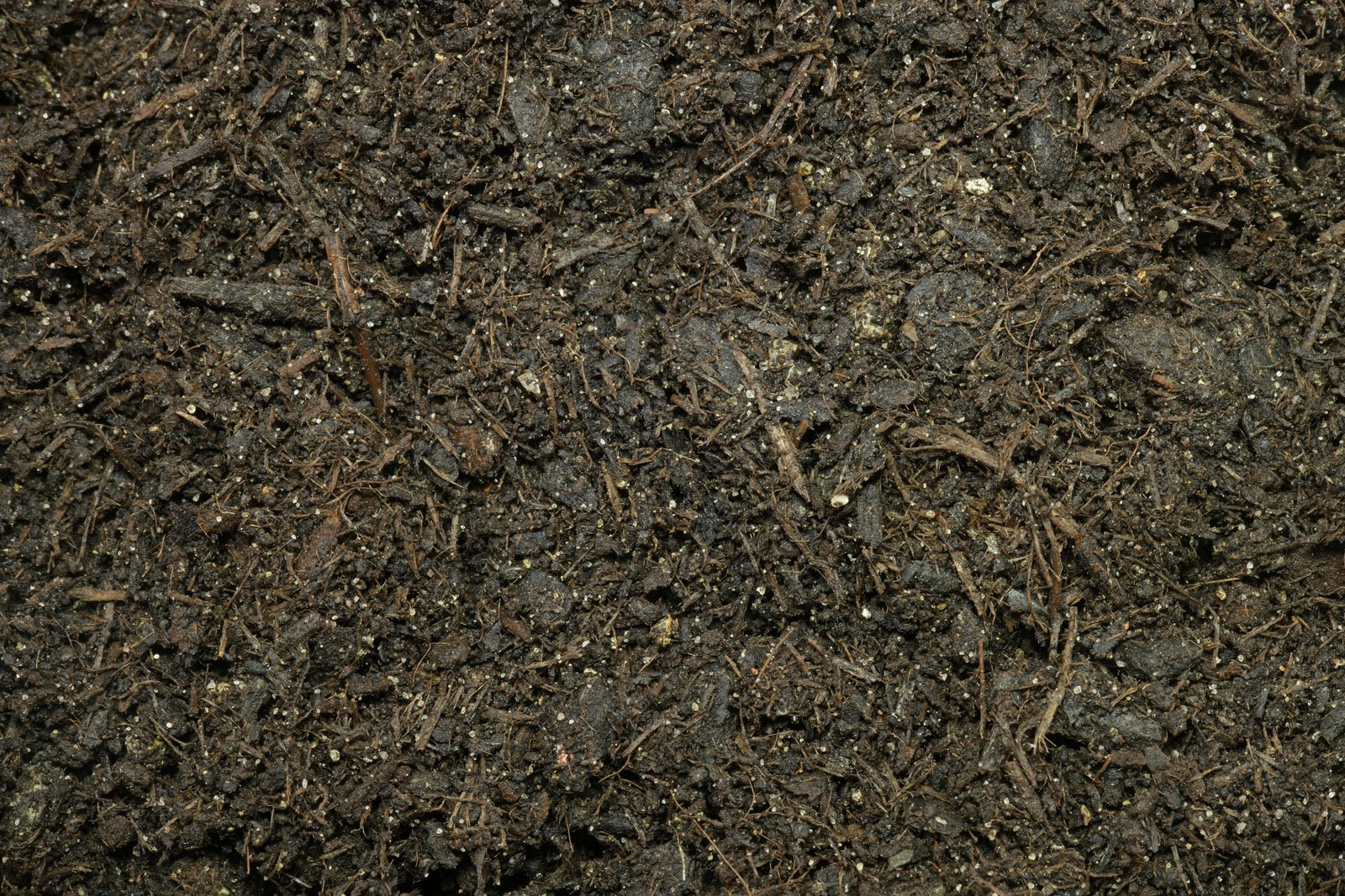 Torffreie Zimmerpflanzen-Erde